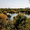 Amazing Lake View - 196sqm, 3 room apartment, Herastrau -Nordului thumb 3
