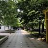 Garsoniera in Rond la Alba Iulia thumb 6