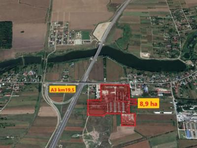 Teren investitie! La primul nod al autostrazii A3-Buc-BV-Km 19 - Moara Vlasiei